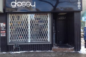 Steel Expandable Security Grilles